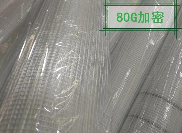80g加密耐碱玻纤网格布